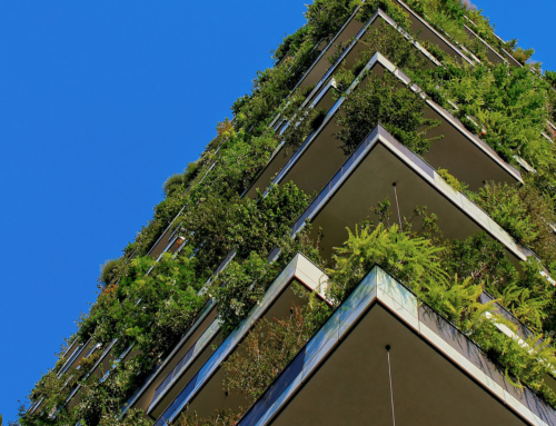 Slattery Carbon Planning Service Endorsed by Green Building Council of Australia
